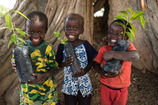 Piante pro Africa